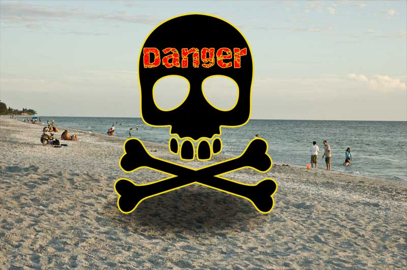 Danger in the Sand