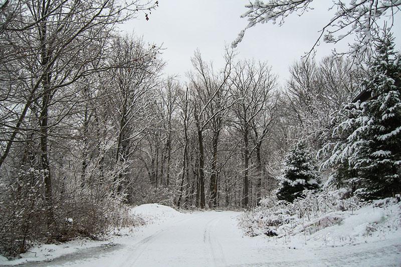Snow – PA style