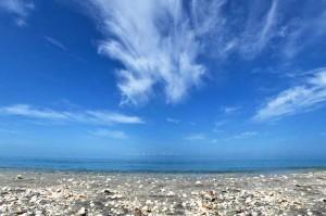 beach_scene